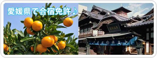 愛媛県で合宿免許