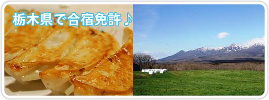 栃木県で合宿免許