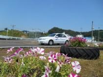 教習所内では、色とりどりの花がタイヤを利用した花壇に植えられています。みずみずしい空気や美しい風景を楽しみながら、教習頑張ってくださいね!