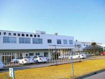 銚子大洋自動車教習所の外壁は白。青空に映える白い外壁は、爽やかさと誠実さ、そして清潔さを感じさせますね♪