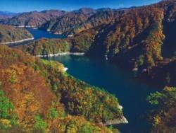 新緑が美しい春、そして黄・オレンジ・赤に色づく秋には、隣町・只見町の田子倉湖観光もおすすめ。湖上遊覧船で美しい景色を眺めながら教習疲れを癒しましょう♪