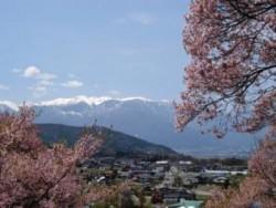 天竜自動車学校がある長野県南信州は観光スポットが多いことで有名です。イチゴ狩りや川下り、スキーにスノボ、リンゴ狩りなど、季節を問わず楽しめますよ♪
