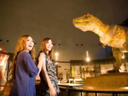 勝山には世界三大恐竜博物館のひとつと言われる恐竜博物館があります。福井県が世界に誇る博物館に、ぜひ足を運んでみてください!