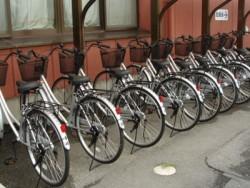 無料のレンタサイクルも多数用意されています!自転車で観光がてら、ちょっと遠くまで走ってみるのも楽しいかもしれませんね。